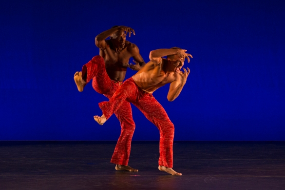 Alvin-Ailey-American-Dance-Theater-Hudson-Valley-Dance-Festival-2017-photo by Francisco Graciano-9238b