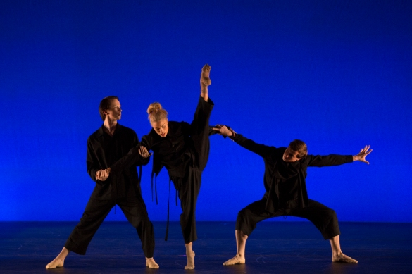Cirio-Collective-Hudson-Valley-Dance-Festival-2017-photo by Francisco Graciano-8350b